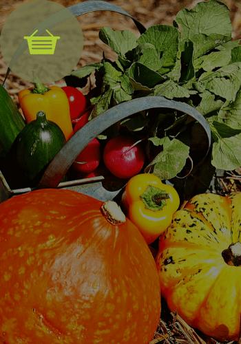 panier legumes muret