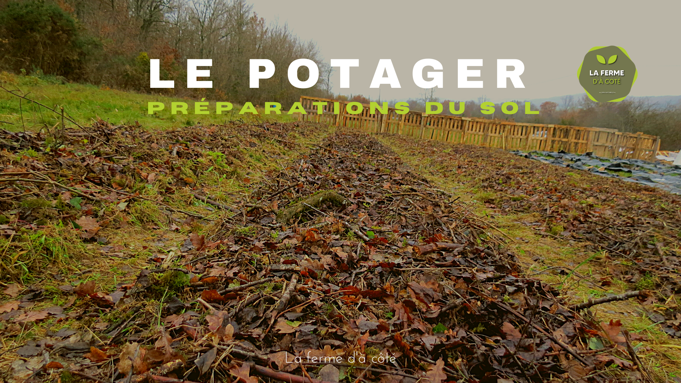 permaculture potager bio